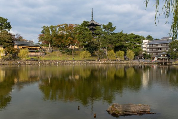 The Kofukuji Temple in the background