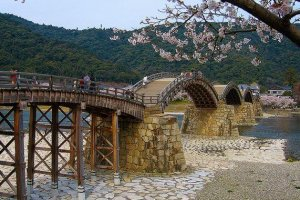The Kintai Bridge area is popular for cherry blossom viewing.