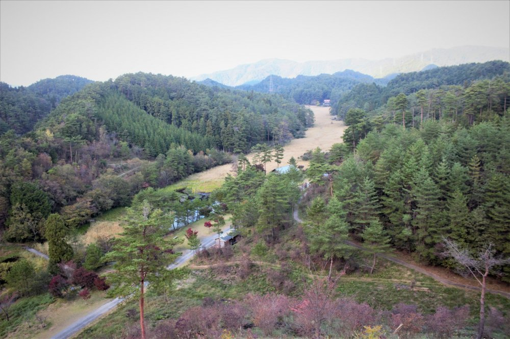 Kurozo Marshlands from atop the lookout tower