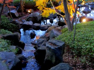 A stream trickles down to the pond below