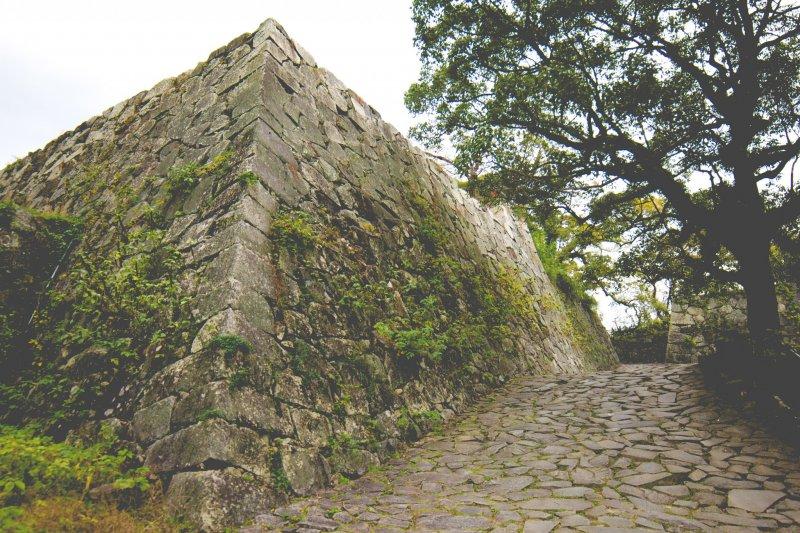 Fukuoka Castle Ruins - Fukuoka - Japan Travel - Tourism ...