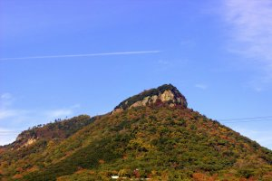 The Yashima Plateau