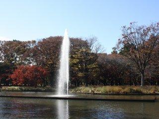 Le jet d'eau et les couleurs d'automne