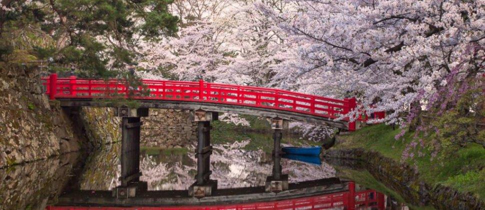 ฮิโรซากิในฤดูดอกซากุระบาน