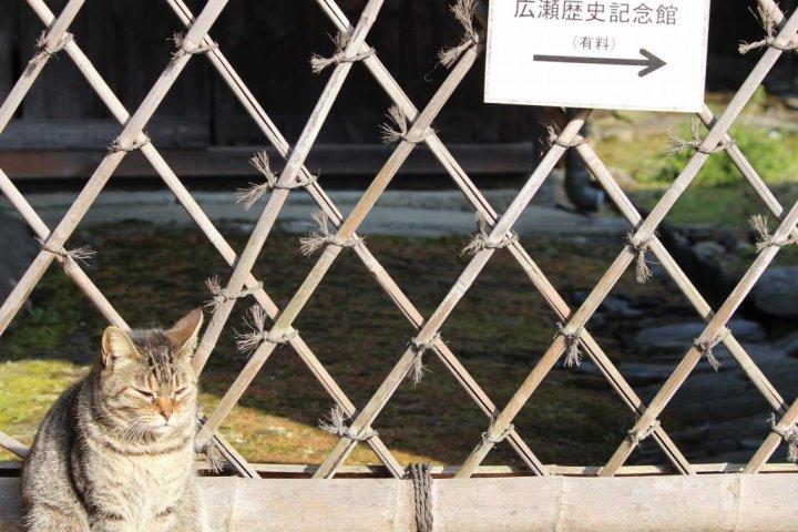 The Hirose Residence in Niihama