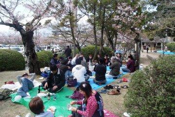 Kono Park, Saga