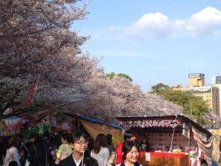 벚꽃축제 기간동안, 오카자키 공원 곳곳에 들어선 길거리 상점들과 오락거리들.
