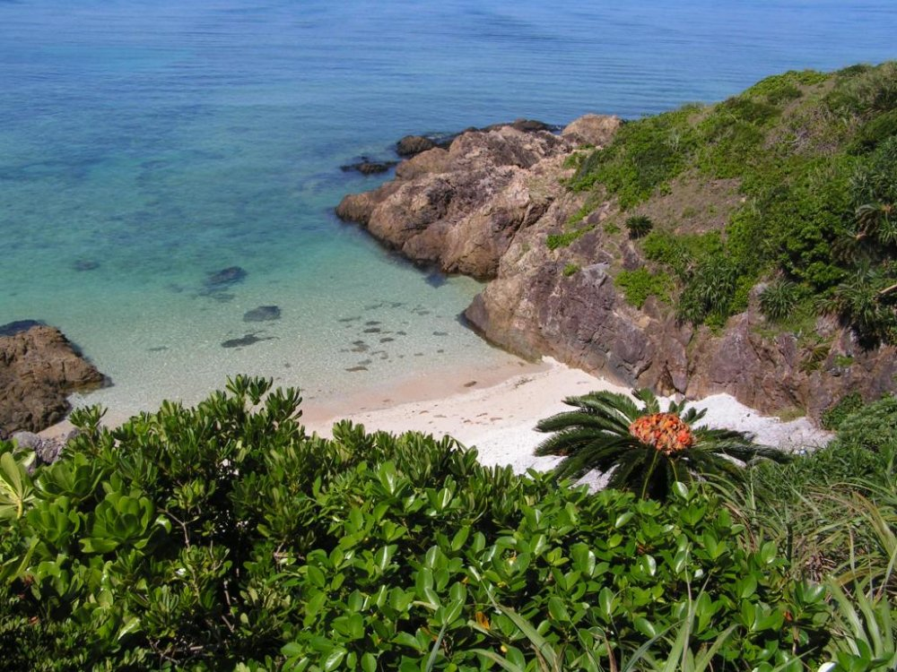 Secluded but accessible bays are a snorkelers paradise