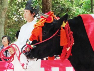 Aoi Matsuri held annually on May 15 in Central Kyoto