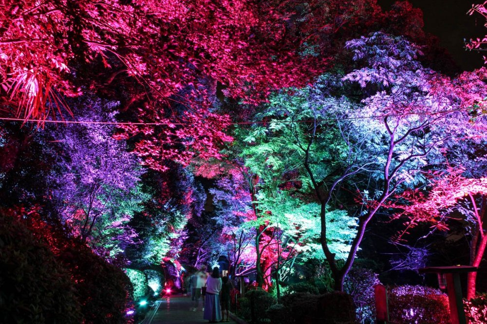 Beautiful illumination in the pathway leading to the 'Sea Hell'