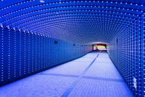 The vivid lights of Tokyo Time Tunnel transform into moving shapes
