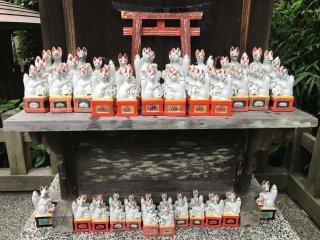 Jozan Inari Shrine