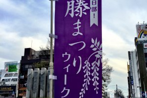 Kasukabe City celebrates its wisteria with banners