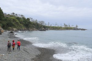 Walking the coast of the Sanriku Geopark
