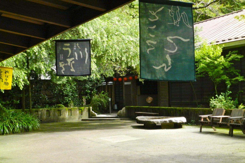 A leafy, peaceful courtyard.
