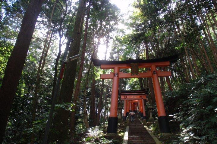 Wandering around Fushimi Inari