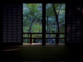 Las puertas están abiertas y puedes ver gran parte del jardín. Lo que no puedes imaginar es la sorpresa que te espera del otro lado