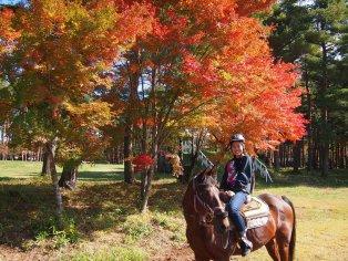 Horse-riding in Yamanashi