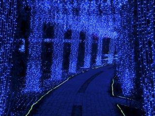 The covered path through the Art Garden