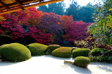 Quinta Shisen-do, Quioto