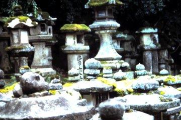 Time Stands Still at Nara