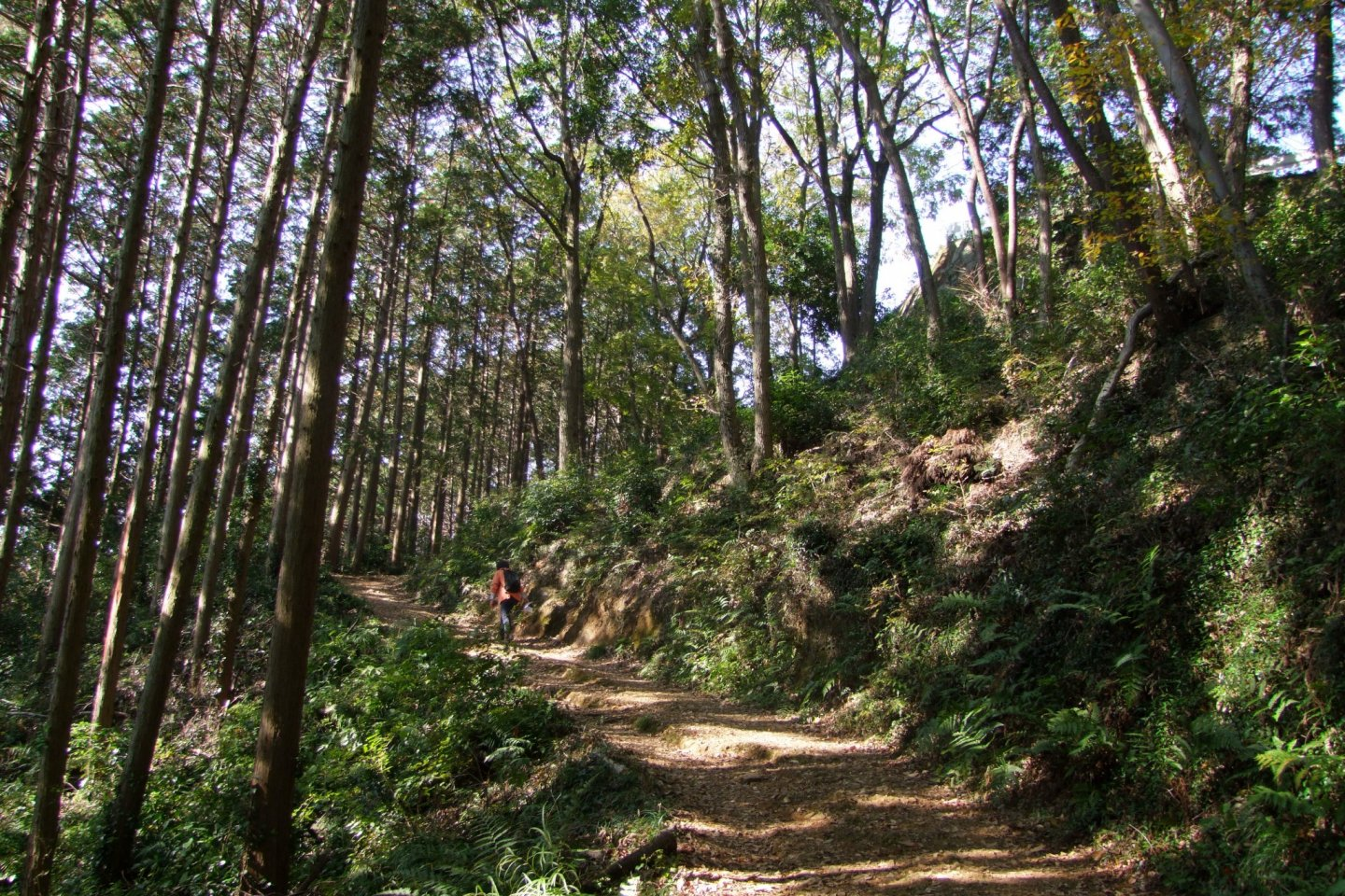 Approaching the summit of Mt. Takasashi