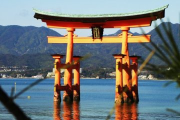 Hiroshima City and Miyajima Private Tour