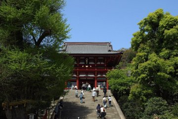 Kamakura Private Tour