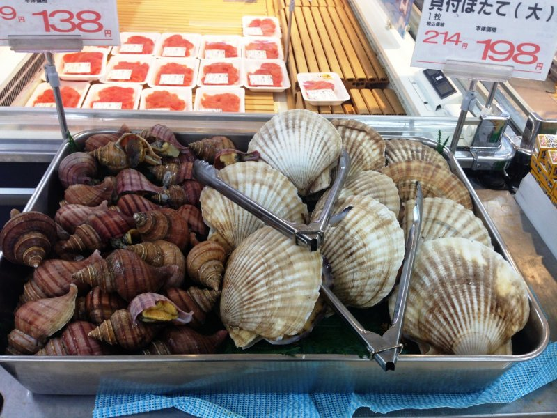<p>Fresh sea creatures big and small at the Co-op markets</p>