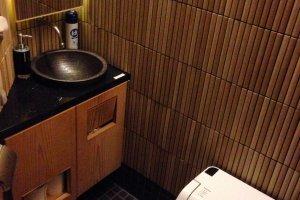 modern yet japanese style toilet