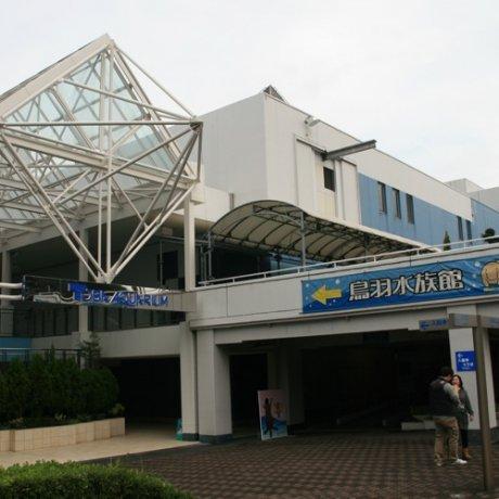 Splash out at Toba Aquarium