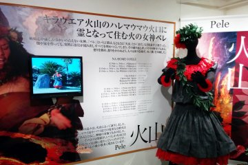 <p>Several displays like this inform guests about a specific hula dance, its tradition, history, dress, and even dance movements with a video screen. u</p>