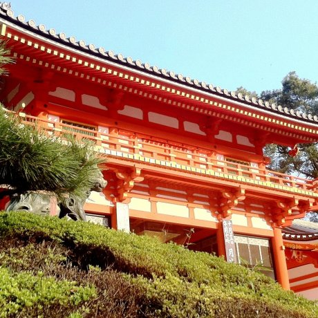 Kyoto for Free