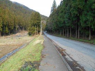 小次郎の滝(一乗滝)へ続く道。歩道があるので歩きやすい
