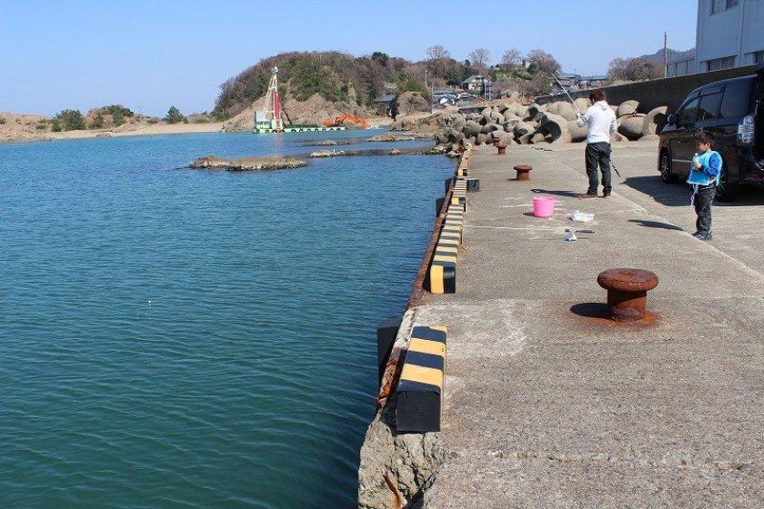 福井市鷹巣地区は日本海に面した越前加賀国定公園にある。その地区内にある和布(めら)漁港は知る人ぞ知る釣りが楽しめる穴場なのだ