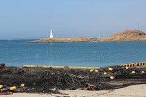 向こうの灯台辺りは天然の岩礁が広がり、カメノテやダダミなど貝採りも楽しい