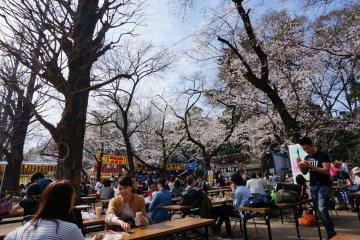 <p>ตรงข้ามคูวัง ในบริเวณศาลเจ้า Yasukuni&nbsp;จะมีร้านรวงมากมายขายอาหารให้ o-hanami ใต้ต้นซากุระ</p>