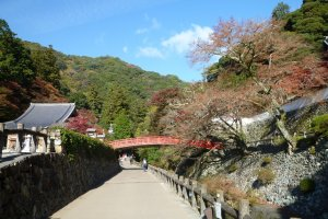 Bridge by Ryuanji Temple