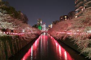 Sungai Meguro Tokyo