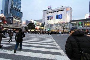 มองกลับไปยังสถานีชิบุย่า ทางออก Hachiko ขวามือคือห้างสรรพสินค้าโตคิว และมหาชนที่กำลังจะเดินข้ามถนนเบื้องหน้า