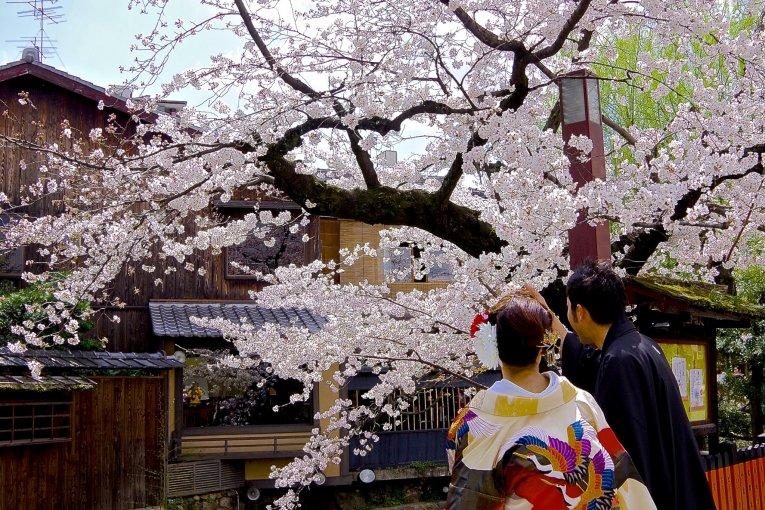 ถนน Gion Shirakawa ที่เกียวโต