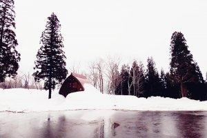 บรรยากาศบ้านป่าในฤดูหนาว