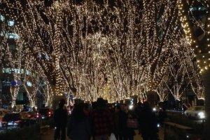 Espetáculo de Luzes das Estrelas na Jozenji dori (avenida)