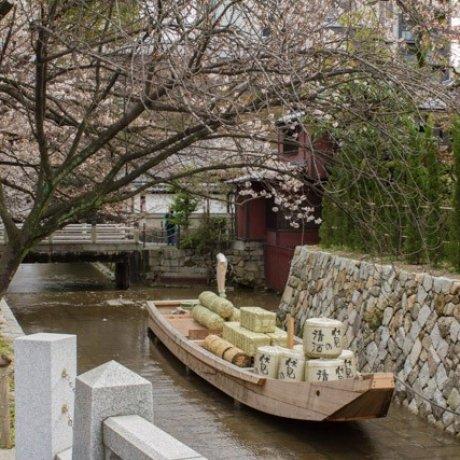 Kiyamachi Dori, Kyoto