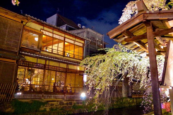 ซากุระใต้แสงไฟที่Gion Shirakawa