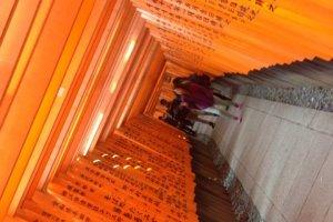 หลังจากที่ท่านได้เที่ยวชมบรรยากาศอันสวยงามของ Fushimi Inari ผมจะพาทุกท่านไปชิมอาหารชื่อดังในตำนานครับ