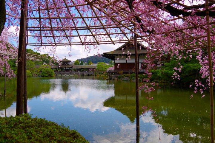 ศาลเจ้าเฮย์อันจิงงุและสวนที่เกียวโต