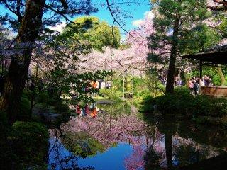 Le sanctuaire heian et son jardin kyoto japan travel for Hotel jardin de fleurs kyoto