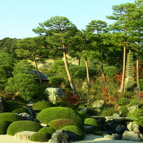 The Gardens of Adachi Museum of Art