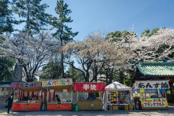 <p>Even at Zojoji you can expect to see food and other booths to enjoy refreshments while also enjoying the sight of the blossoms above.</p>